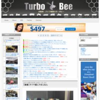 Turbo Bee